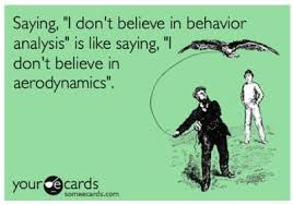 Behaviour Analysis Believe